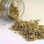 Herb - Fennel Seed