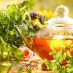Herbal Tea - Tea Pot