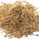 Herb - Nettle Root