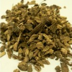 Herb - Yellow Dock Root