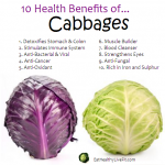 10 Health Benefits of Cabbage.