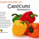10 Health Benefits of Capsicum/Bellpeppers.