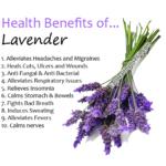 Lavender - EatHealthyLiveFit.com