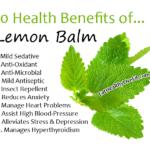 Lemon Balm - EatHealthyLiveFit.com
