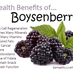 10 Health Benefits of Boysenberries.