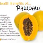 10 Health Benefits of Pawpaw.