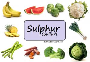 Foods Containing Sulphur Dioxide