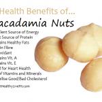 The Health Benefits of Macadamia Nuts