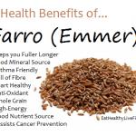 Farro (emmer) - eathealthylivefit.com