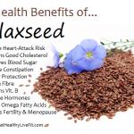 Flaxseed - eathealthylivefit.com