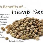HempSeeds - eathealthylivefit.com