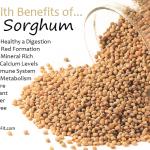 Sorghum - eathealthylivefit.com