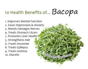 Bacopa - EatHealthyLiveFit.com