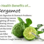 Bergamot - EatHealthyLiveFit.com