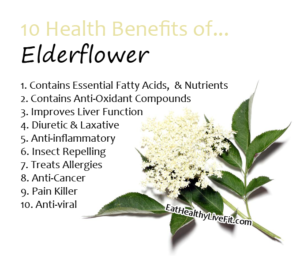 Elderflower - EatHealthyLiveFit,com