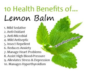 Lemon Balm-EatHealthyLiveFit.com